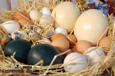 ¿Qué ha sido de los huevos blancos?